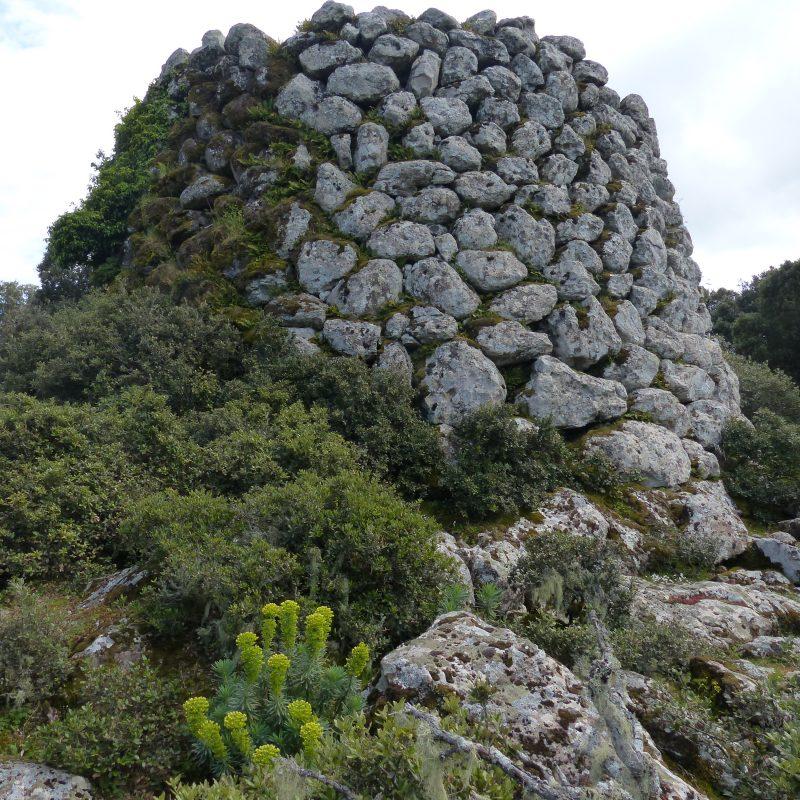 Umgebung Antica Dimora del Gruccione